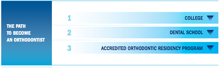 orthodontist education credentials